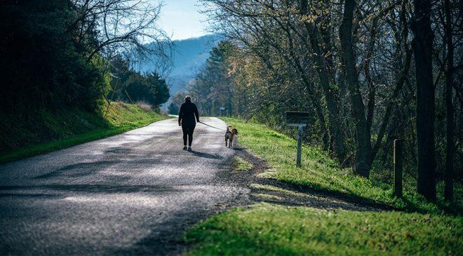 walking 660x365 - walking