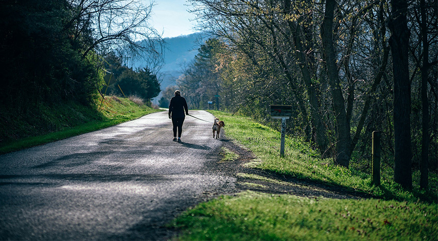 walking - How nature taught humans the value of nurturing others